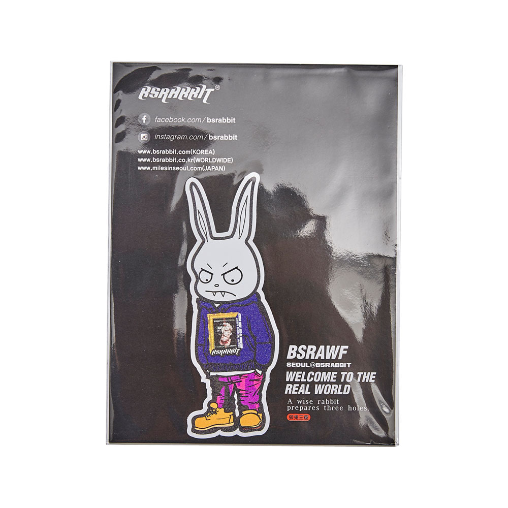 BSRABBIT GROUCHY RABBIT BOY DIE-CUT STICKER(PVC) 1ea