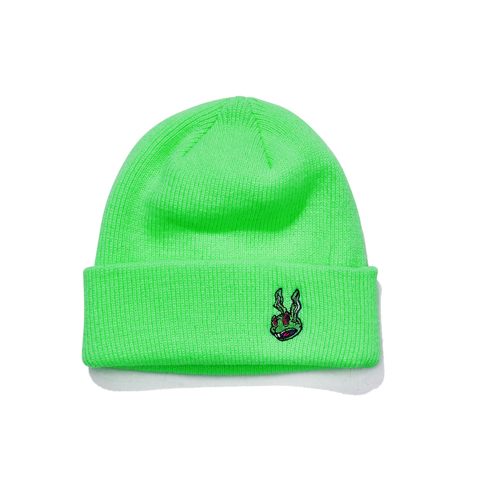 자체브랜드 TRIPPY RABBIT BEANIE NEWGREEN